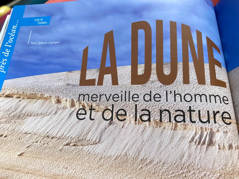 Terres des Landes en Gascogne - La dune landaise